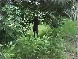 реальный Африканский любительское ебут на дереве часть 2