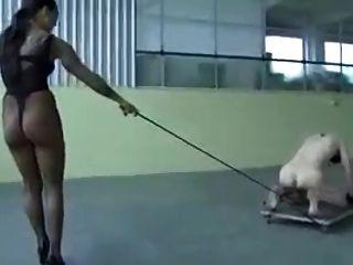 любовница обучение ее рабом
