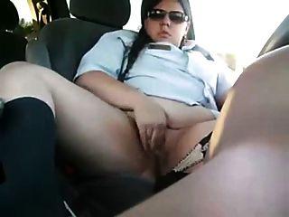 птица в машине