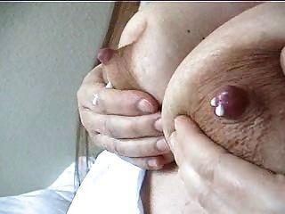 беременная кошка сад дойка груди2
