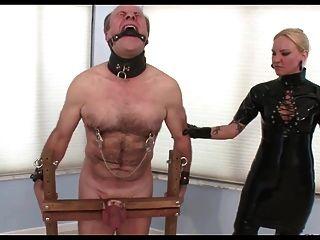 зондирование, мячи и пытки петуха